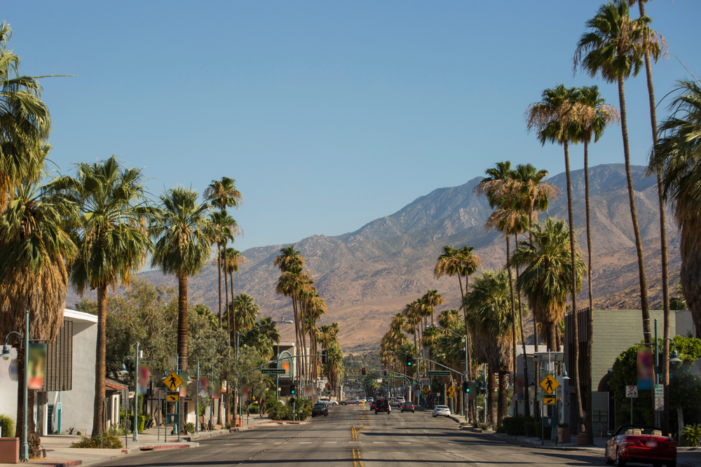 Palm Springs Road with Palm trees